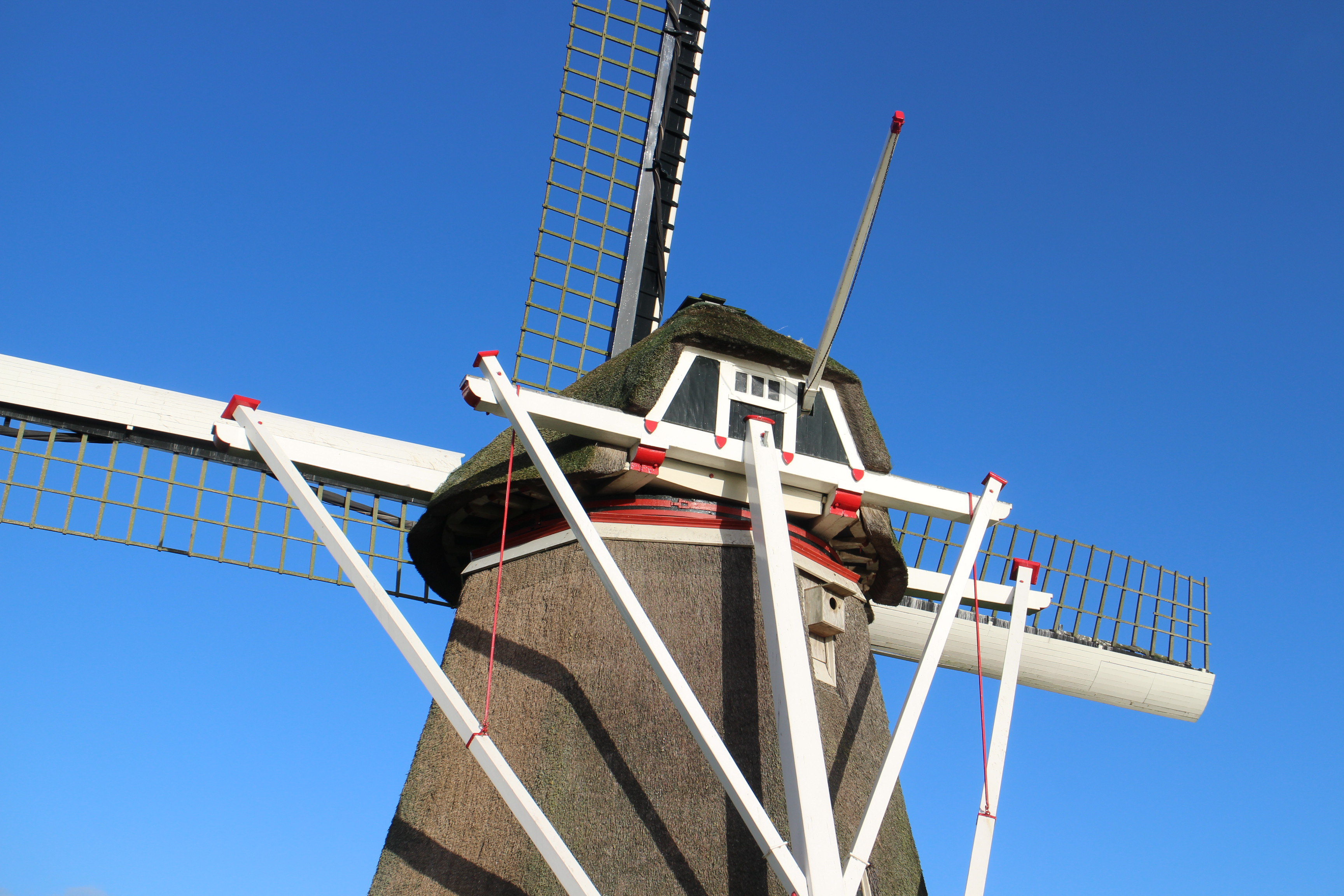 Op de fiets langs molens in Noardeast-Fryslân